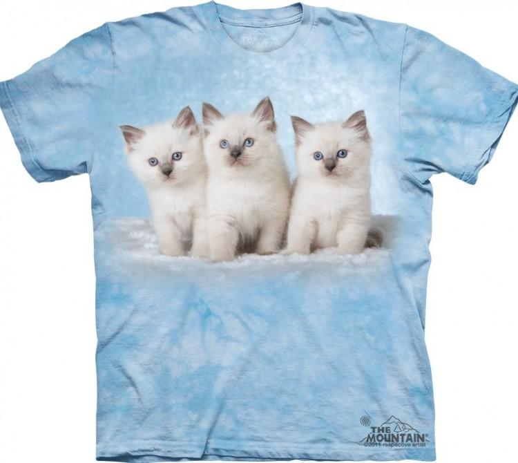 Купить The Mountain Футболка Cloud Kittens - Три дымчатых котенка